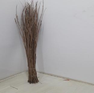 Coconut Broom Stick Regional 1.5 Foot