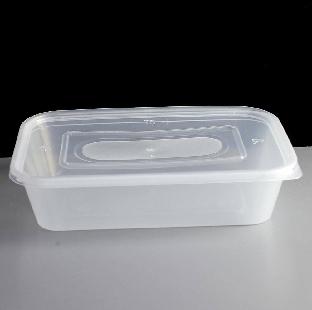Plastic Box Med Size