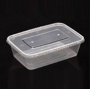 Plastic Box Big Size