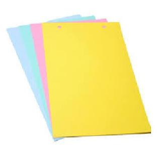 Regional Cardboard File Divider A4