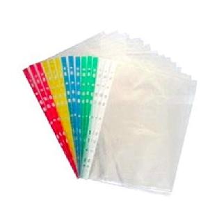 Pre-Punched Tpt PVC Sheet Protector, D-Gauge, A4, 100 Pc/Pk