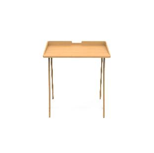 Elm Study Table